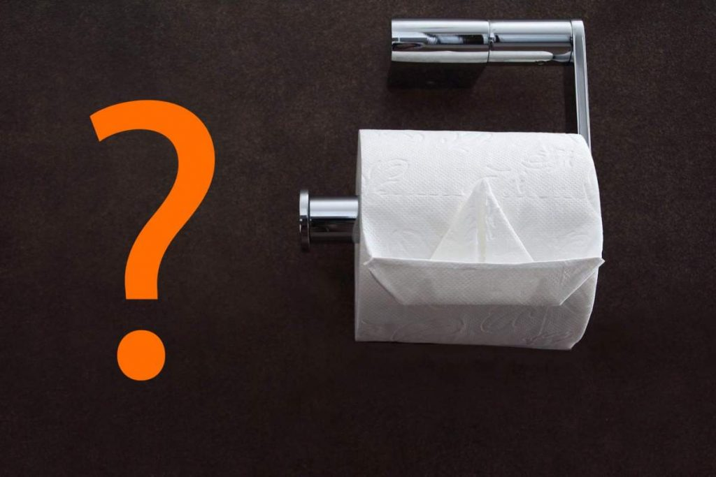 Toilet paper is shown with a question mark beside it in this file image.